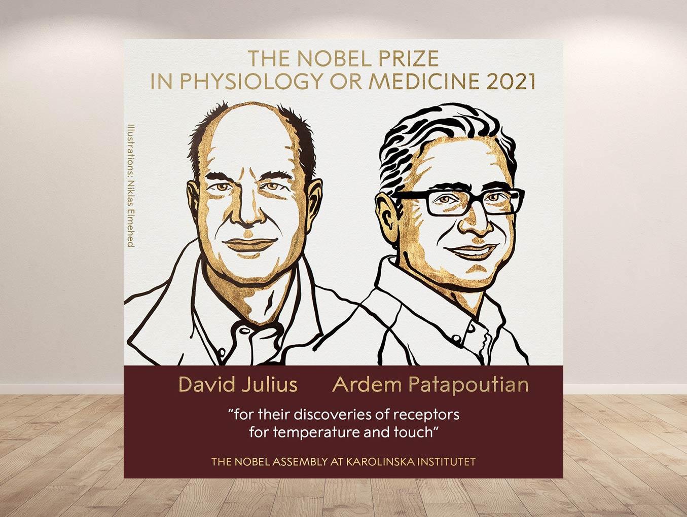 O Nobel da medicina