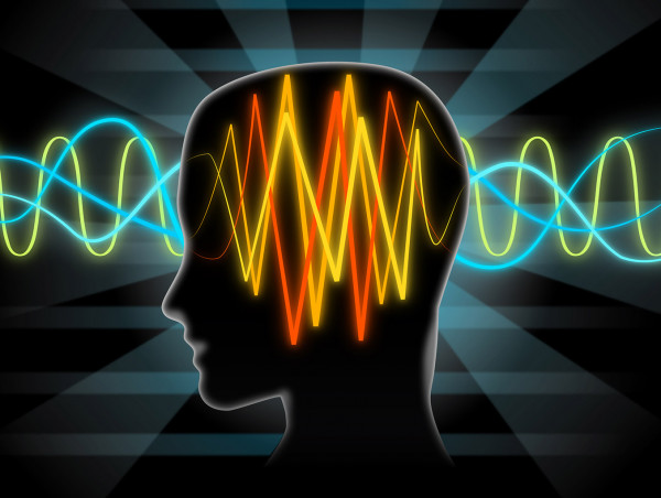 Cérebro ou mente qual comanda dor cronica - Dor Crônica - O Blog das Dores Crônicas